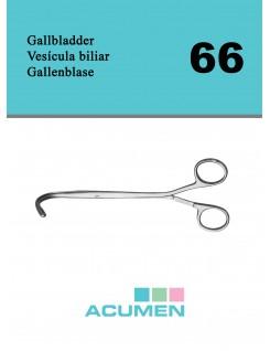 66 - Gall Bladder